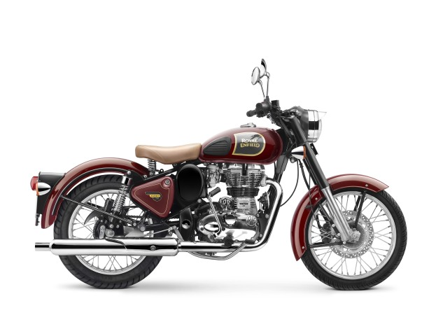 Classic-350-chestnut-04